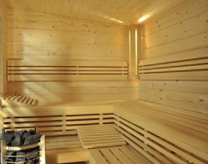 sauna massif d 39 exterieur tylo sme eau et bains. Black Bedroom Furniture Sets. Home Design Ideas